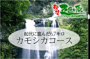 五色ヶ原の森 カモシカコース