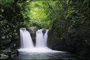 透明感溢れる自然の流れを感じてください